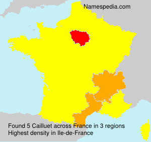 Surname Cailluet in France