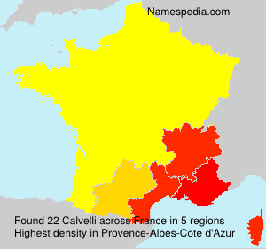 Surname Calvelli in France