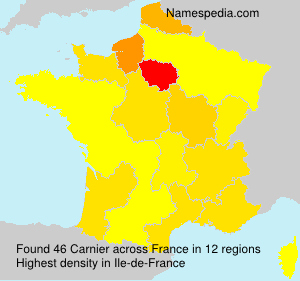 Carnier