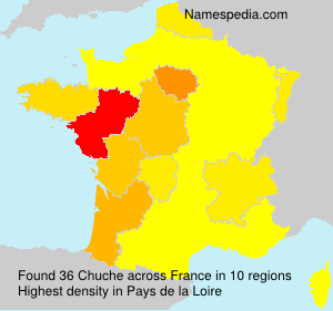 Surname Chuche in France