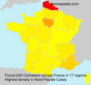 Surname Cocheteux in France