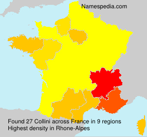 Surname Collini in France
