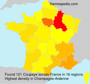 Surname Coupaye in France