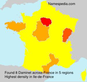 Daminet