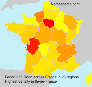 Surname Dorin in France