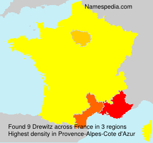 Surname Drewitz in France