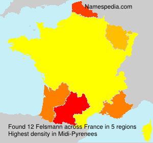 Surname Felsmann in France