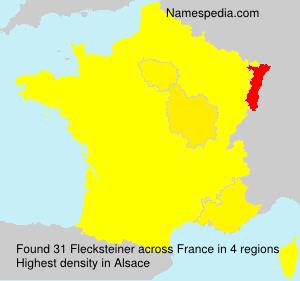 Flecksteiner