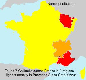 Gallinella