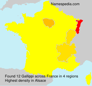 Gallippi