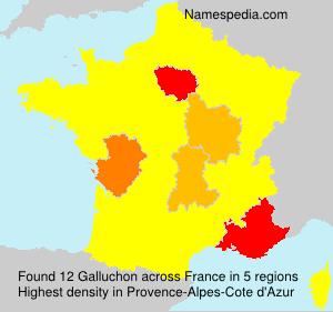 Galluchon
