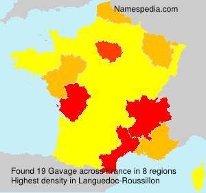 Gavage