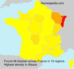 Geissel