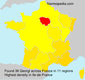 Surname Georgi in France