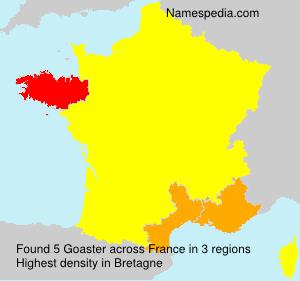 Goaster