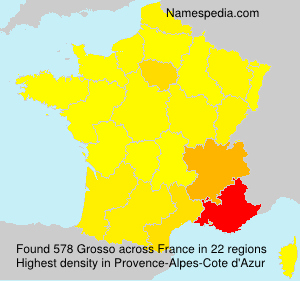 Surname Grosso in France