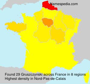 Surname Gruszczynski in France