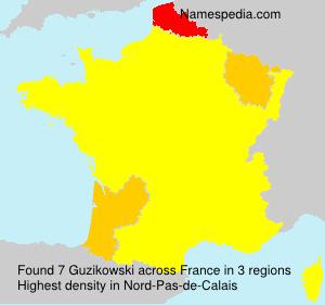 Surname Guzikowski in France