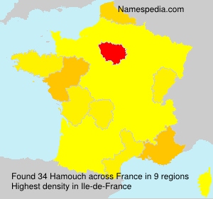 Surname Hamouch in France