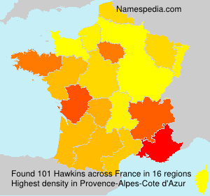 Surname Hawkins in France