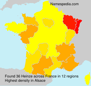 Surname Heinze in France