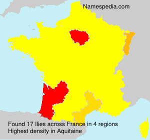 Surname Ilies in France