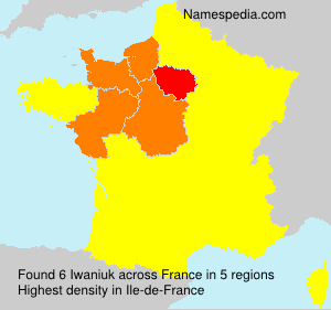 Surname Iwaniuk in France
