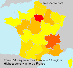 Surname Jaquin in France