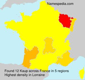 Familiennamen Kaup - France