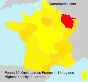 Kneib - France