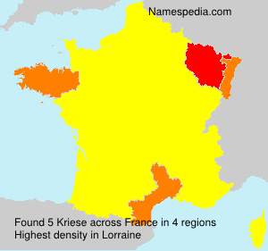 Surname Kriese in France