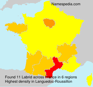 Surname Labrid in France