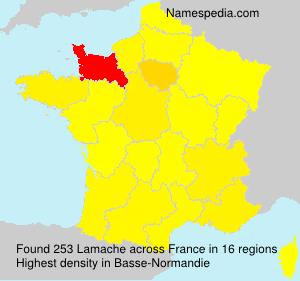 Lamache