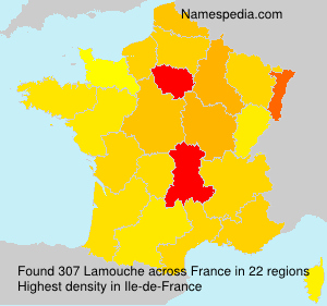 Surname Lamouche in France