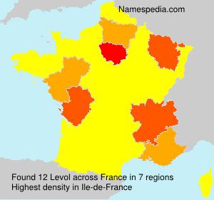 Surname Levol in France
