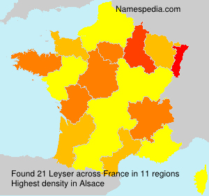 Surname Leyser in France