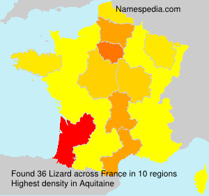 Surname Lizard in France