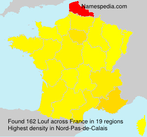 Surname Louf in France