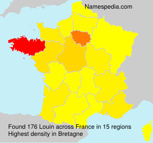 Surname Louin in France