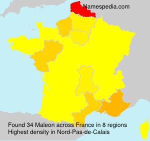 Maleon