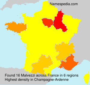 Surname Malvezzi in France