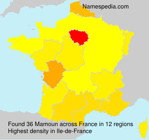 Surname Mamoun in France