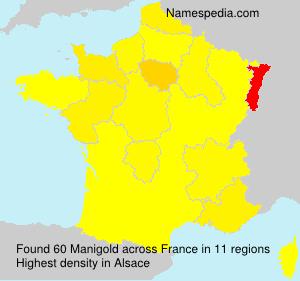 Manigold