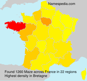 Surname Maze in France