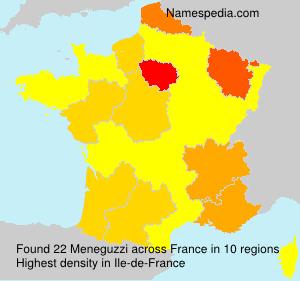 Familiennamen Meneguzzi - France