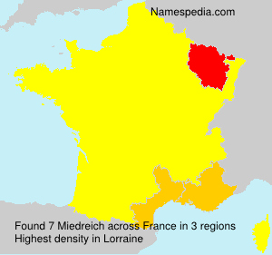 Surname Miedreich in France