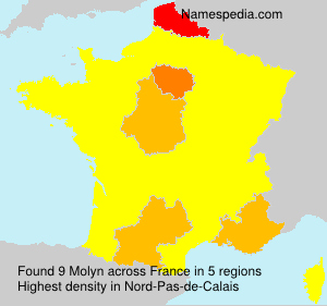 Molyn