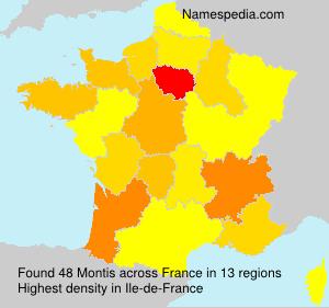 Familiennamen Montis - France