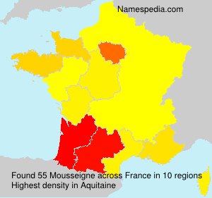 Surname Mousseigne in France