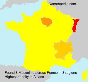 Familiennamen Muscolino - France